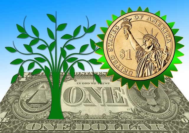 mince, bankovka a zelený strom